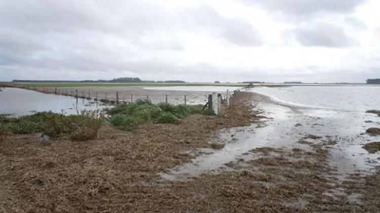 Ruralistas: Situación hídrica