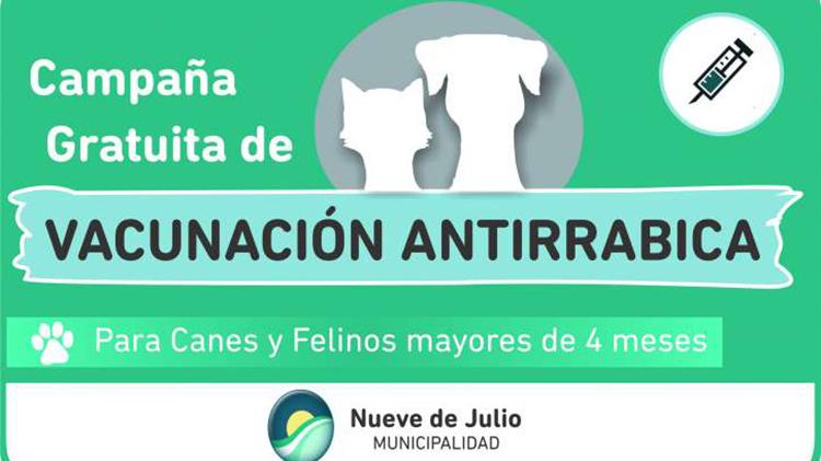 Vacunación  antirrábica gratuita