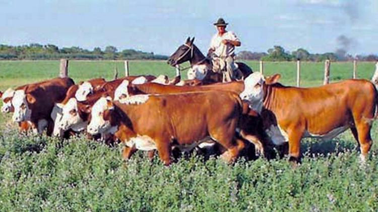 Jornada sobre ganadería agroecológica