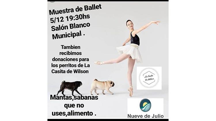 Gran Ballet Solidario