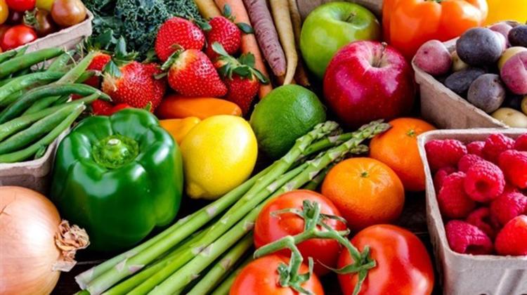 Talleres de alimentación saludable