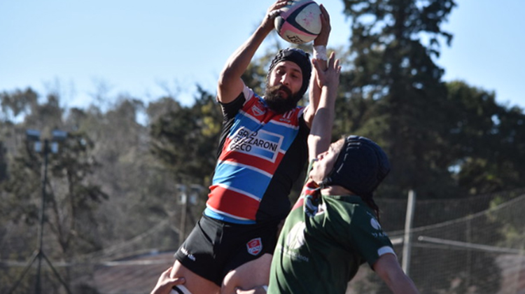 Resumen semanal del rugby