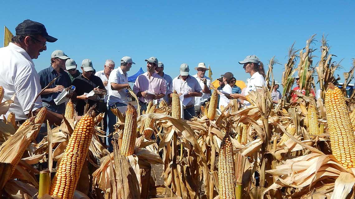 Día de Agricultor